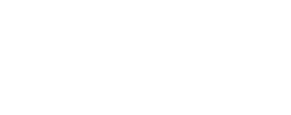 Logo Dinis
